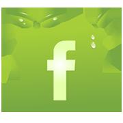 Holisztikus Élet facebook oldal