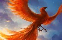 Phőnix madár, avagy az újjászületés lehetősége