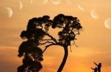 Holdfázisok ritmusa életünkben